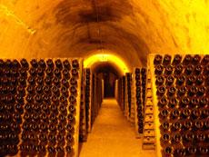 ドイツワイン専門店―プロストワ...